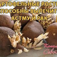 Удивительно! Картофельные ростки лечат астму и рак!